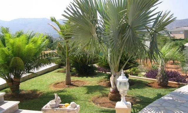 jv000501vista1_jardin