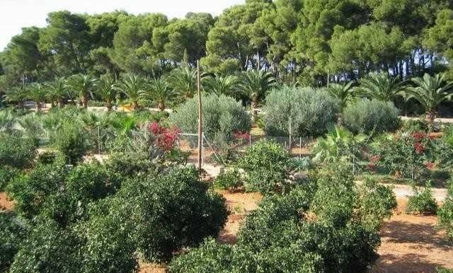 jv000501vista3_jardin