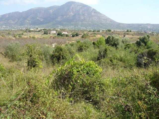 JV 731 terreno en javea en catarroges